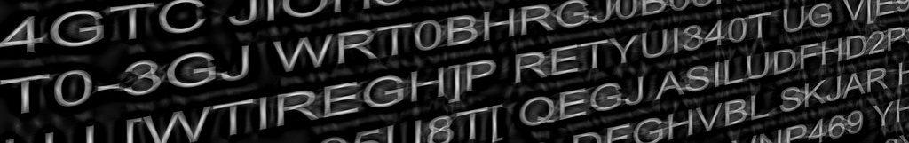 Mitschrift zum Vortrag: Cybercrime